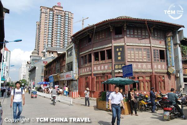 tcm farmacy chinese medicine china 03